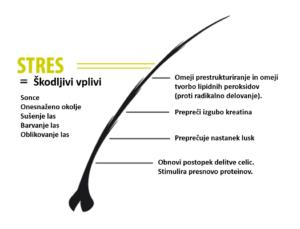 Zaščita in obnova las s keratinom